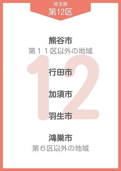 11 埼玉県 小選挙区_page-0012.jpg