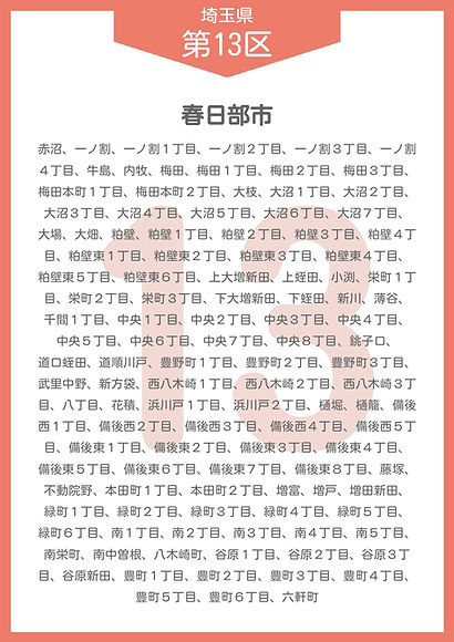 11 埼玉県 小選挙区_page-0013.jpg