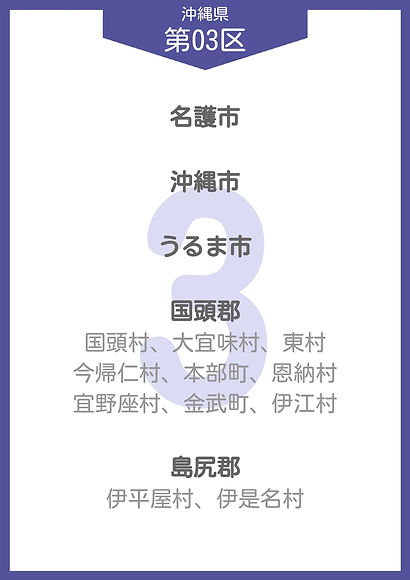 47 沖縄県 小選挙区_page-0003.jpg
