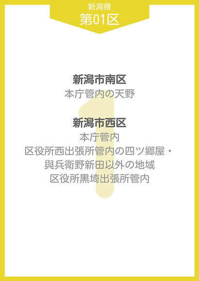 20 新潟県 小選挙区_page-0002.jpg