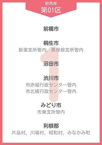 10 群馬 小選挙区_page-0001.jpg