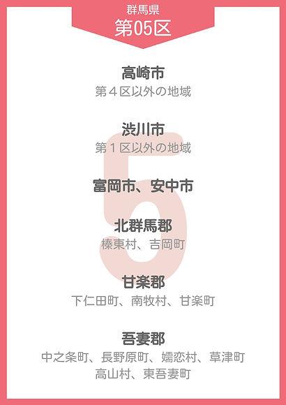 10 群馬 小選挙区_page-0005.jpg