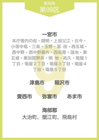 22 愛知県 小選挙区_page-0009.jpg