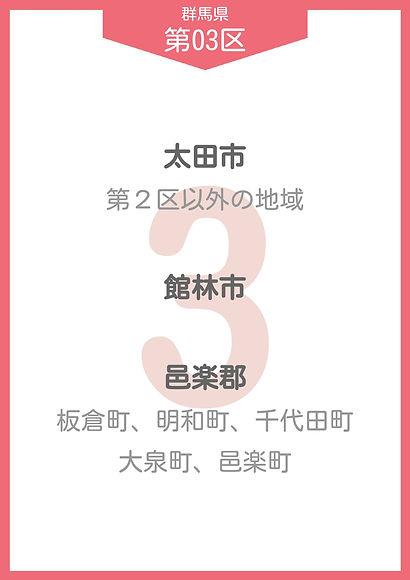10 群馬 小選挙区_page-0003.jpg