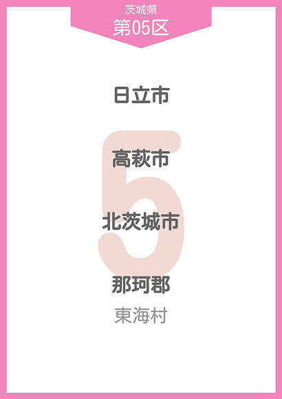 08 茨城県 小選挙区_page-0005.jpg