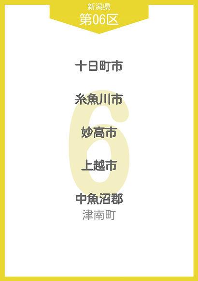20 新潟県 小選挙区_page-0008.jpg