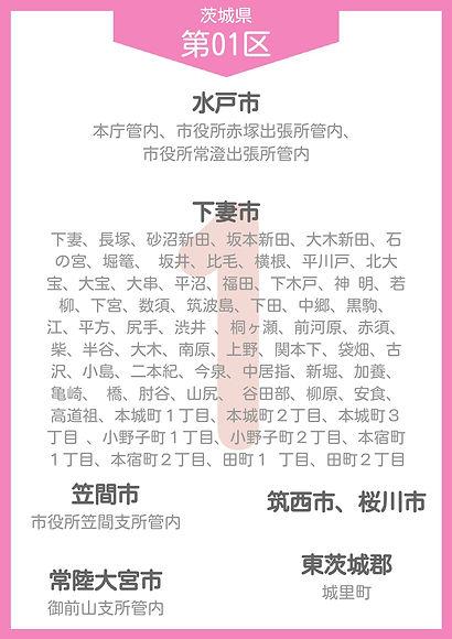 08 茨城県 小選挙区_page-0001.jpg