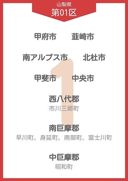 14 山梨県 小選挙区_page-0001.jpg