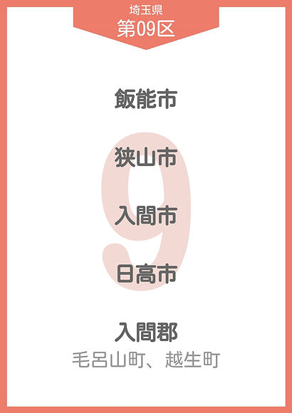 11 埼玉県 小選挙区_page-0009.jpg