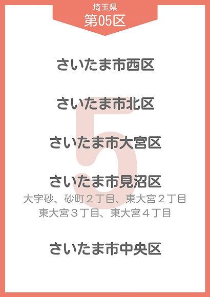 11 埼玉県 小選挙区_page-0005.jpg