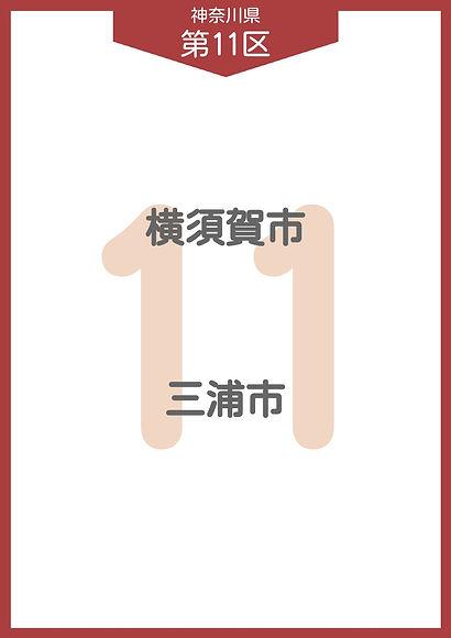 13 神奈川県 小選挙区_page-0011.jpg