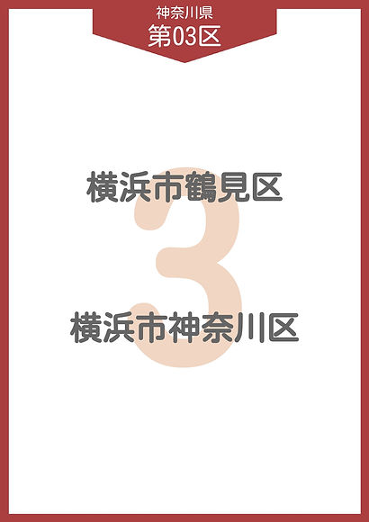 13 神奈川県 小選挙区_page-0003.jpg