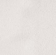 blanc polaire