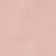 270 beige rose