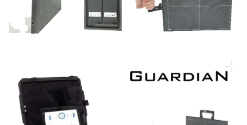 VIDISCO Guardian