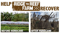 Ridge to Reef Farm