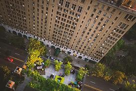 building_car_street_looking_down_tree-10