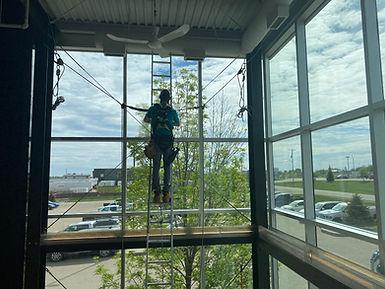 Edmontons Premier Window Cleaners