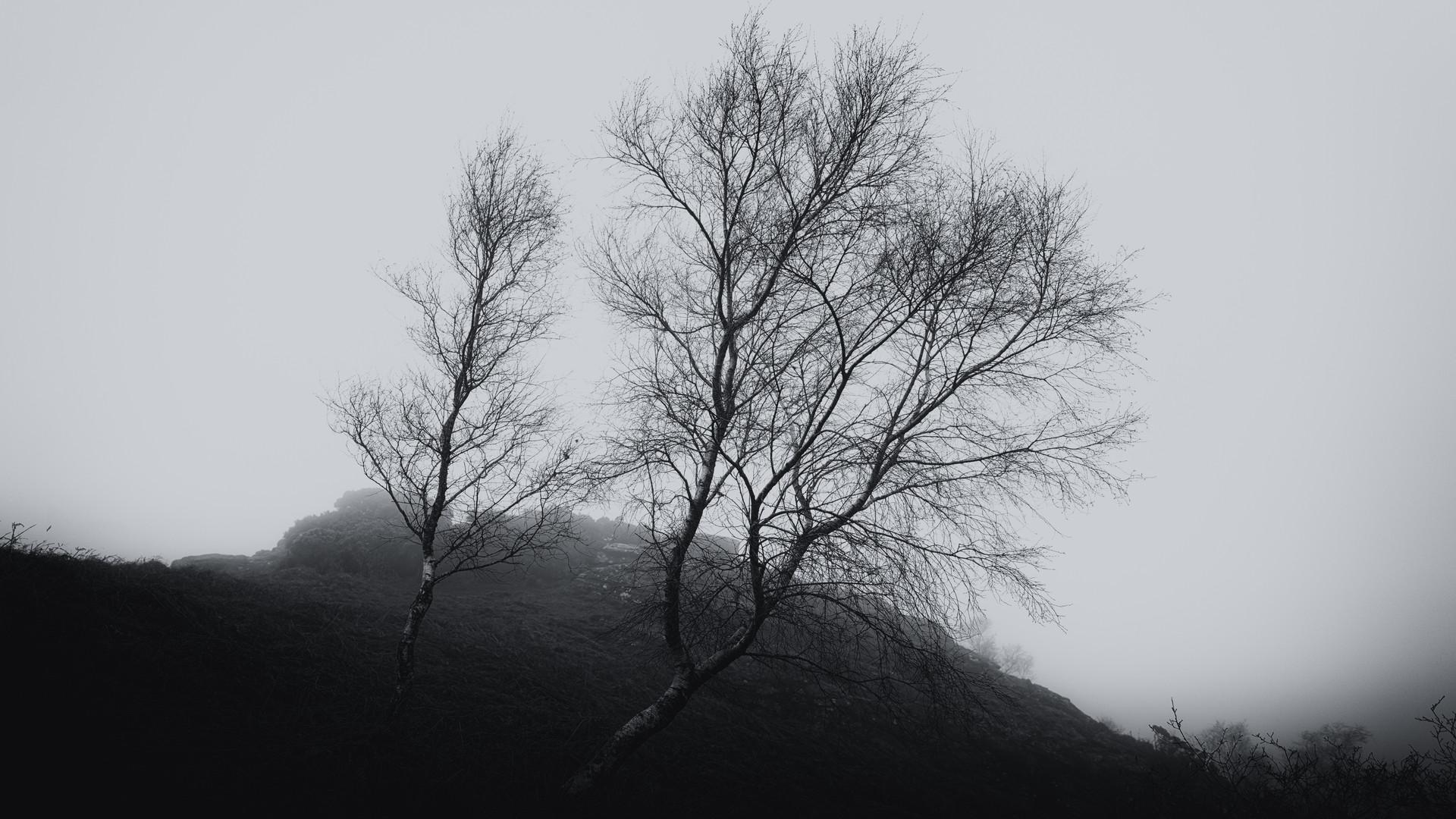 Bench Tor - Dartmoor