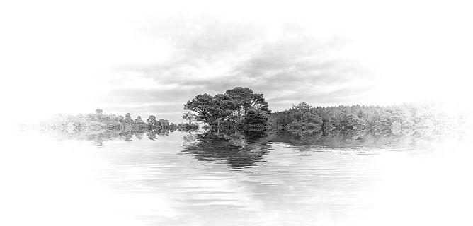 Woodybury Reflections-Edit.jpg