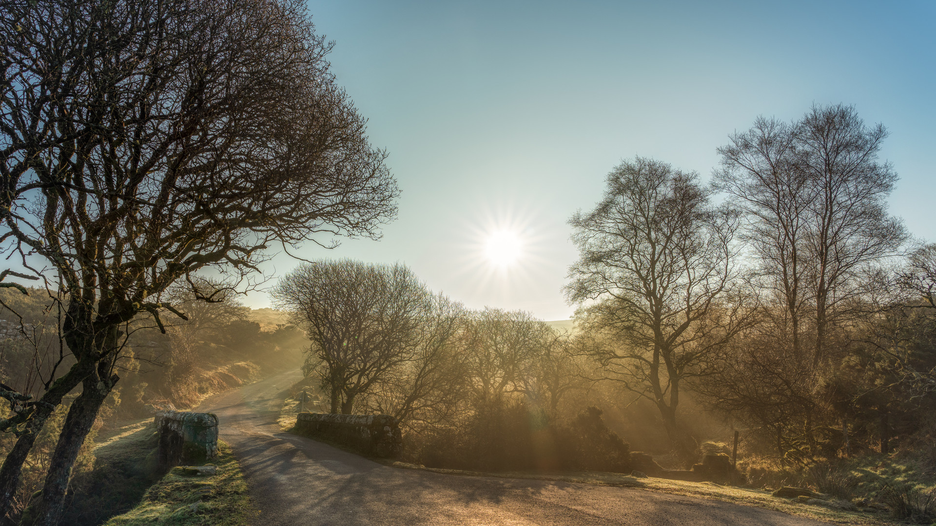 Bridge over O Brook - Dartmoor