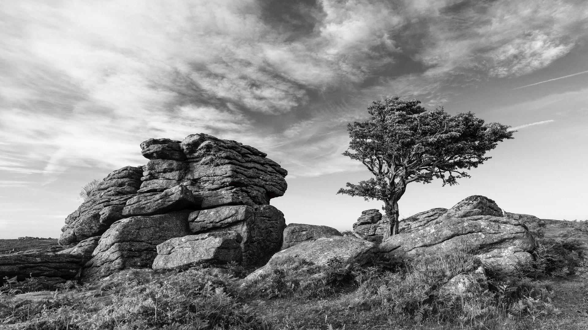 Emsworthy Rocks (Black & White) 2018
