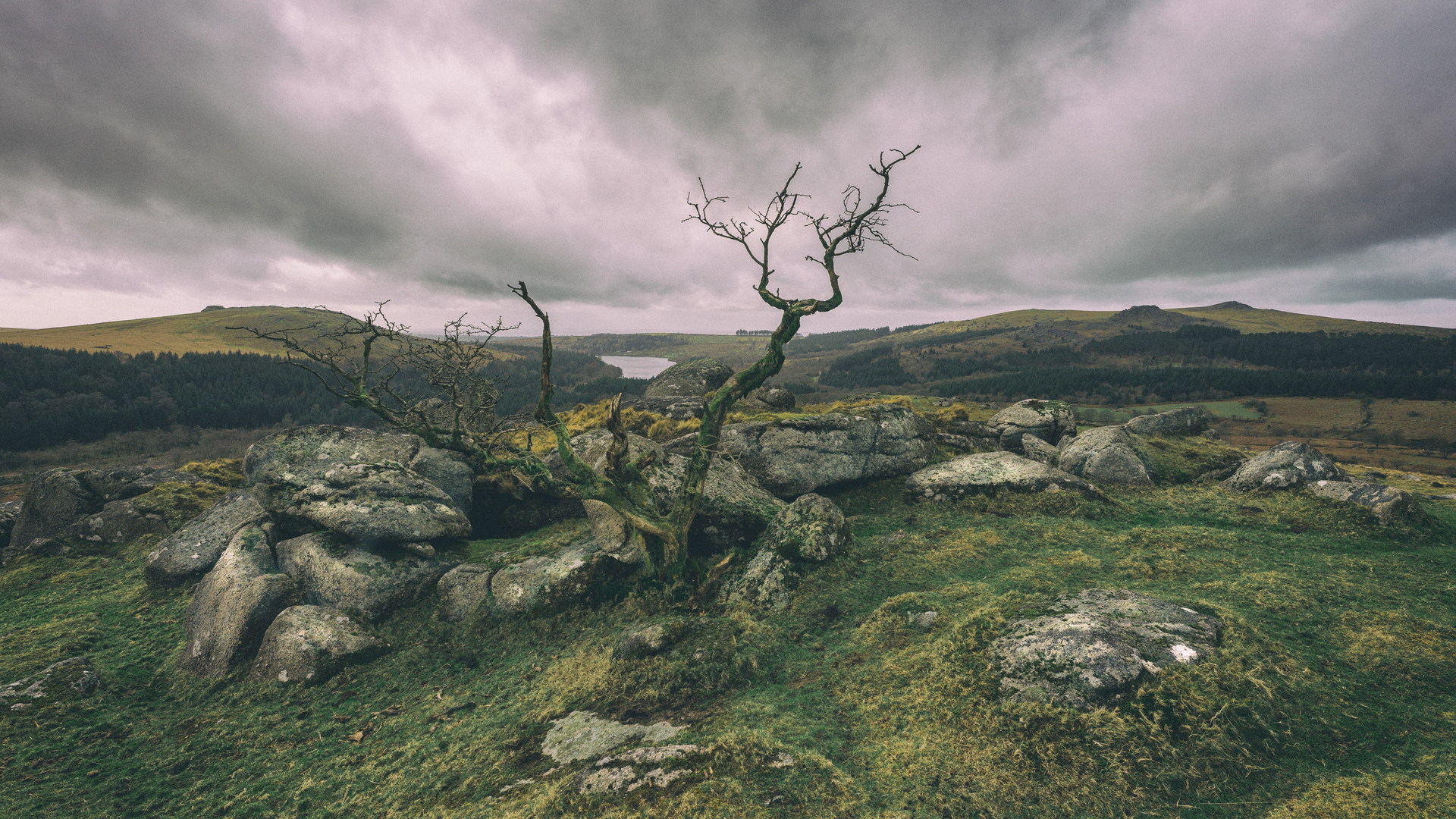 Down Tor - Dartmoor