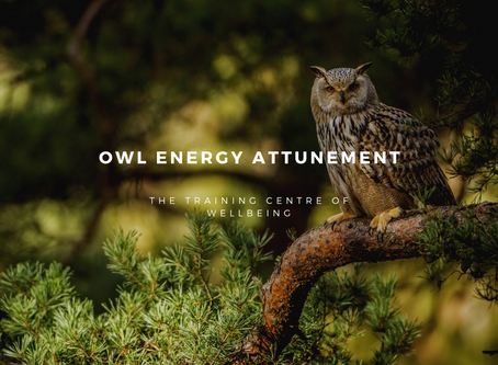 This weeks distant energy attunement is to the majestic owl.