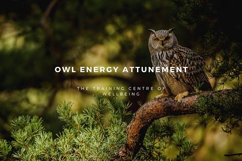 Owl Energy Attunement