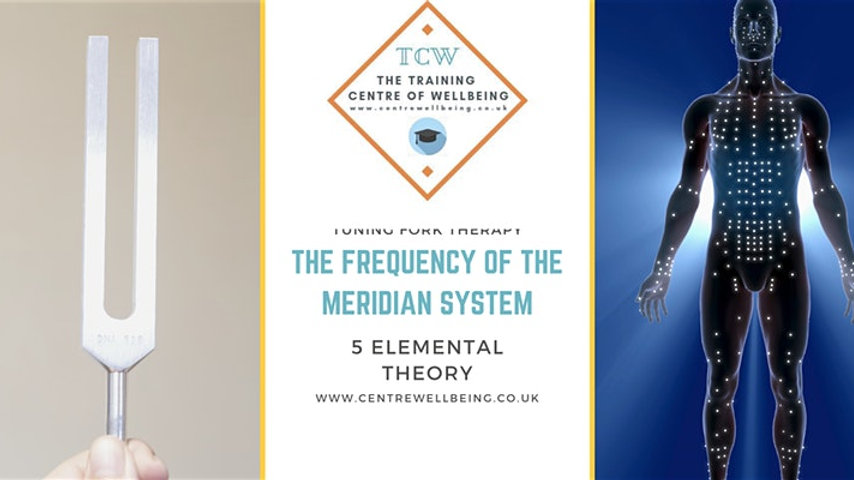 The Frequency of the Meridian System ™ - tuning fork therapy £450