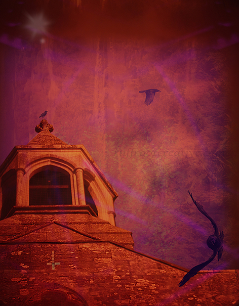 Church Of Corvid