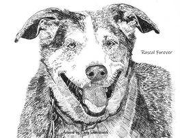 Traci Frey Rascal artwork - Copy.jpg