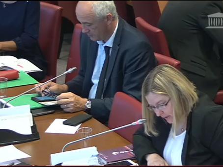 Audition de Jean-François Delfraissy, Président du Comité consultatif national d'éthique
