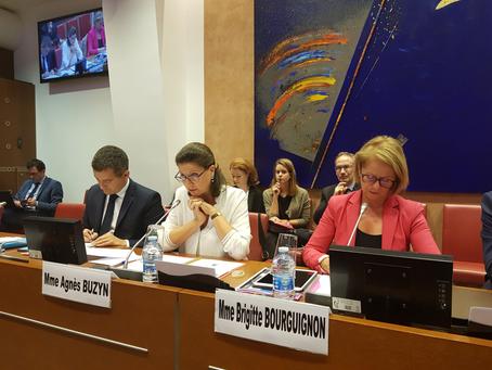 Audition d'Agnès Buzyn, ministre des Solidarités et de la Santé
