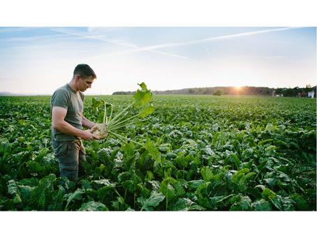 Proposition de résolution européenne relative à notre souveraineté agricole et alimentaire