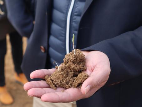 Le gel à frappé les agriculteurs de l'Essonne : Constat à Saint-Escobille