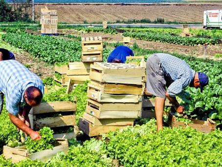 Vivre dignement de son travail : voici ce que nous voulons pour tous les agriculteurs de France !