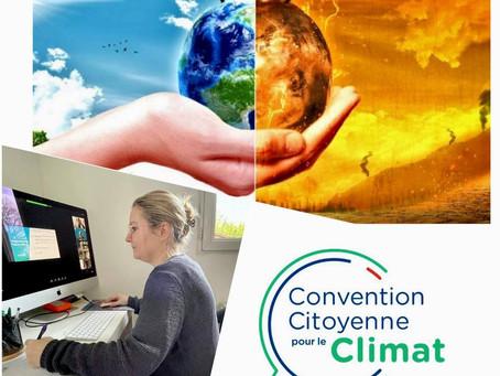 La préservation de l'environnement en voie d'inscription dans la Constitution