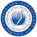 PSI Cert Iconcolor s.jpg