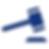 litigation_icon-01.png