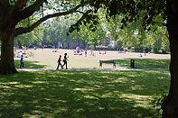 07914828126 - London Fields, East London Man and Van