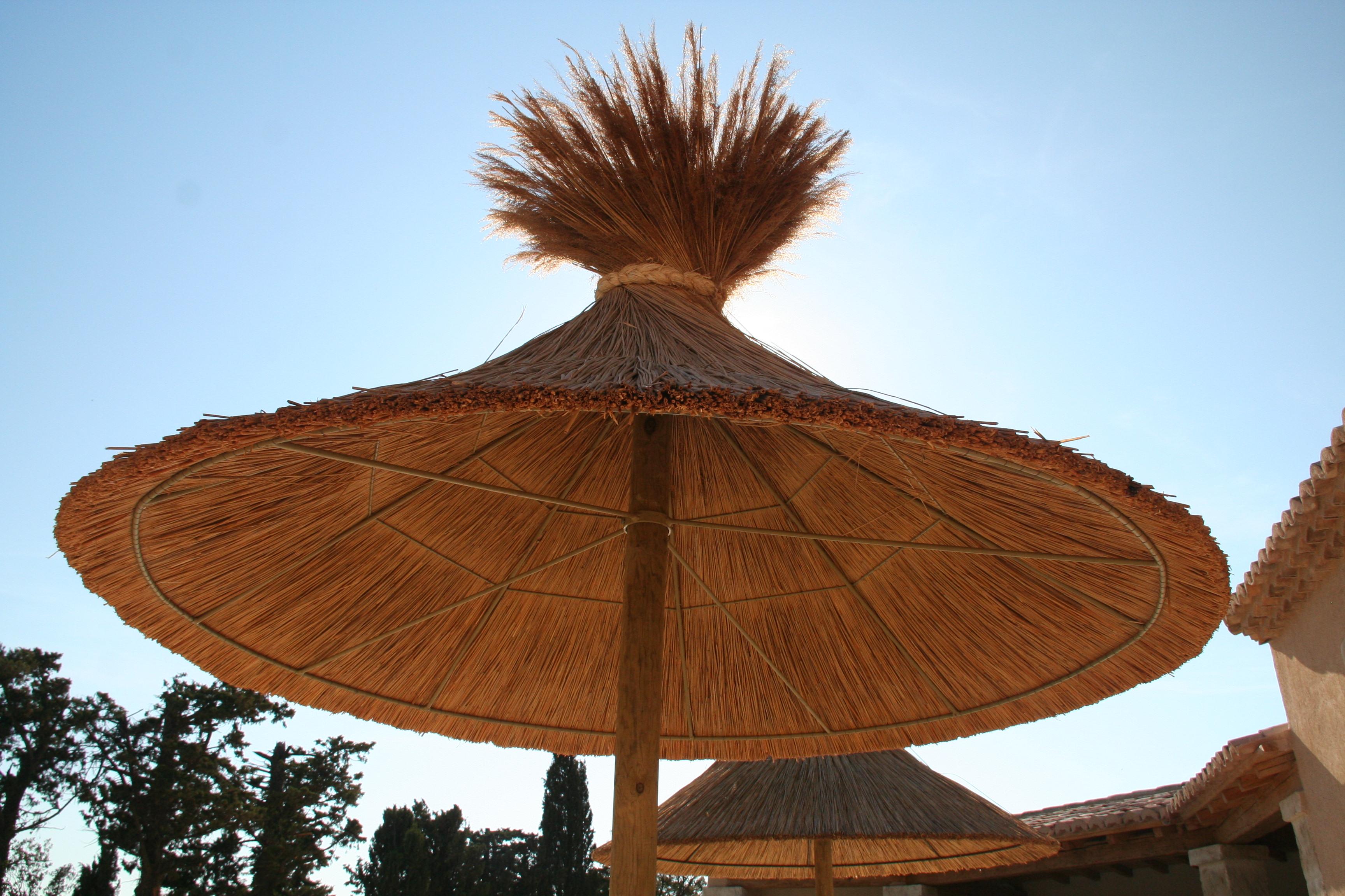 Un grand parasol tahitien