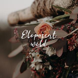 Elopment wild