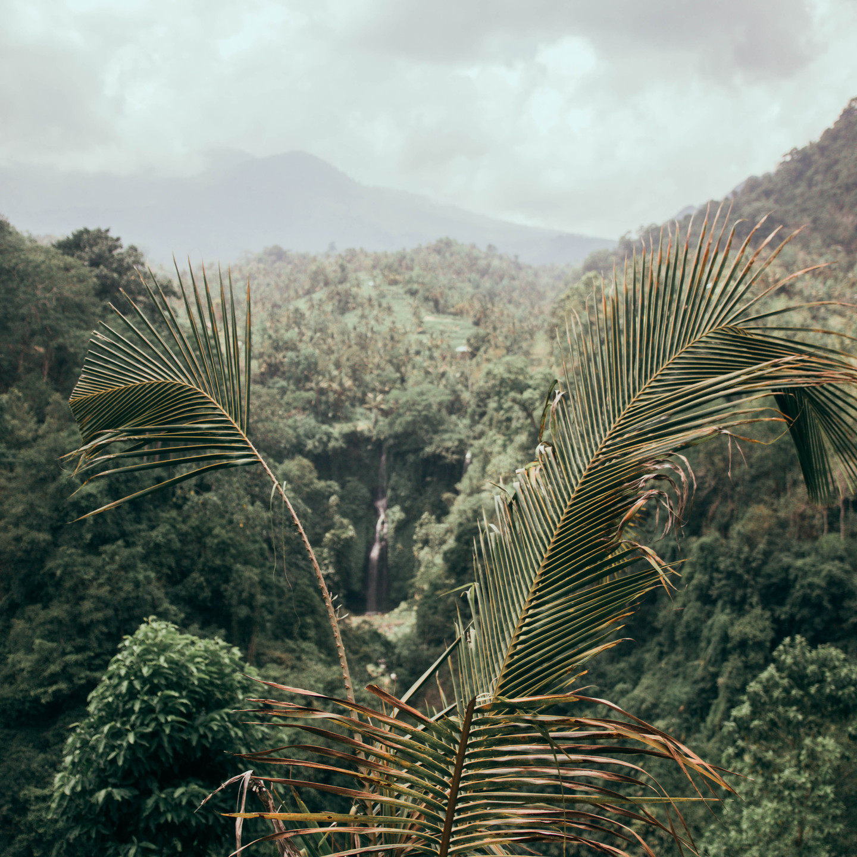 Sekumpul Waterfall, North Bali