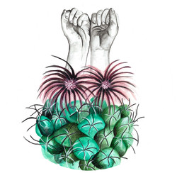 """""""Cactus1"""""""