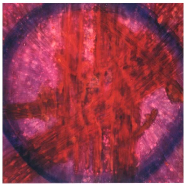 2010年 (第74回自由美術展)[創造-混沌と-]