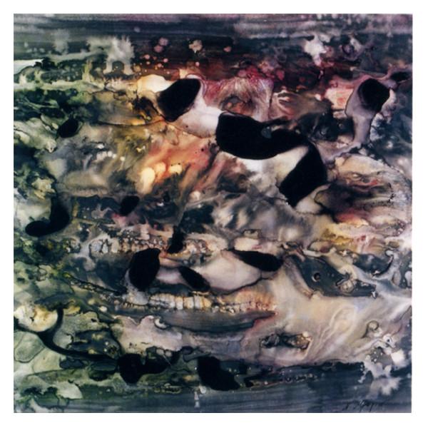 2003年 (第67回自由美術展)[貝]