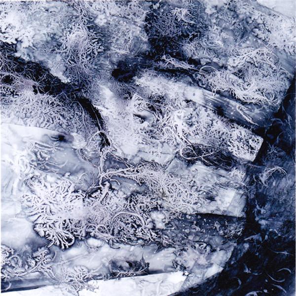 2006年 (第70回自由美術展)[瀾(らん)]