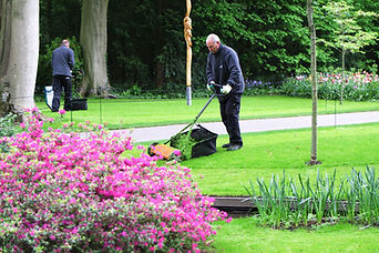 man-cutting-the-glass-in-the-park-yard-w