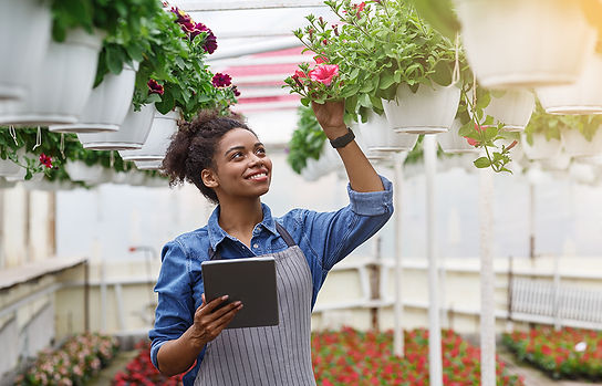 innovation-technology-for-smart-farm-sys